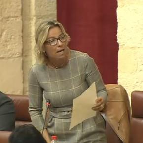 Albás exige al Gobierno Andaluz que cumpla con el acuerdo parlamentario y ponga en marcha el registro de explotaciones agrarias que evitaría la venta de aceitunas robadas