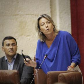 Albás exige medidas concretas para mejorar la atención sanitaria en Lucena