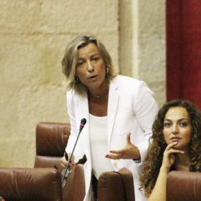 Ciudadanos pedirá explicaciones a la Junta por el aumento de quejas de pacientes en el Hospital Reina Sofía