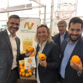 """Emiliano Pozuelo defiende """"crear sinergias entre las comarcas"""" durante la Feria de los Municipios"""